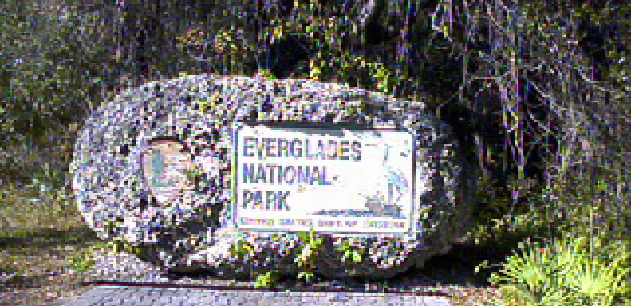 エバーグレイズ国立公園
