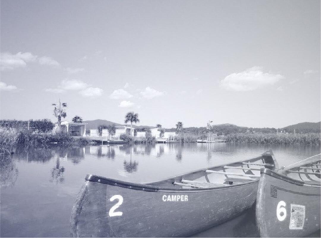 エバーグレイズ池